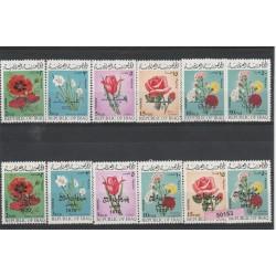 1970  IRAQ  FIORI NON EMESSA  12 VAL MNH MF50153
