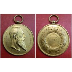 1894 BELGIO LEOPOLDO II MEDAGLIA CONCORSO IPPICO CERCLE EQUESTRE DOUR MF41625