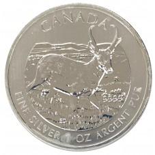 2013 CANADA 5 DOLLARI...